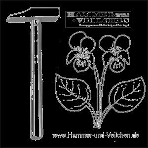 Hammer + Veilchen